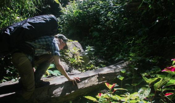 Bulldog Track - Papua New Guinea